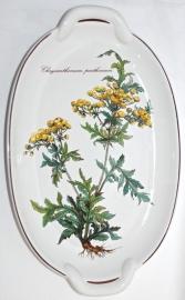 Ovale Schaal met Greepjes (26 cm.) Botanica - Villeroy & Boch