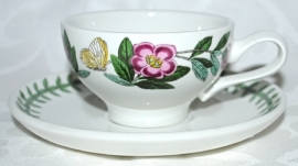 Espressokop & Schotel Rhododendron - Portmeirion Botanic Garden