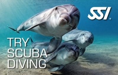 SSI Try Scuba Zwembad
