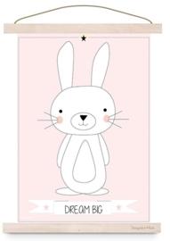 Poster konijn