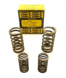 Terry's Aero valve springs for Panther 350 - 500 - 600 OHV Singles (VS120)