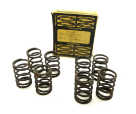 Royal Enfield Interceptor twins 500-600-750 Terry's valve springs (451.538A)