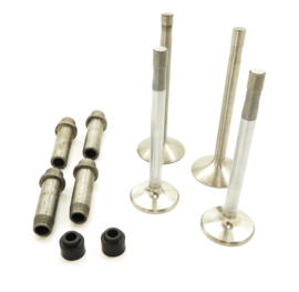 Norton Commando 750 Valve & guide set (06.4034, 06.5115, 06.2725, 06.3527)