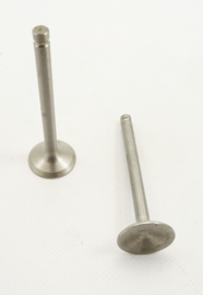 Pair of exhaust valves (V285)