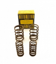 Terry's Aero valve springs for Velocette 350 OHC singles (VS147)