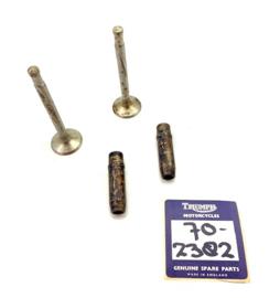 Triumph TRW Pair of inlet valves & guides (E 2382 - 3062)