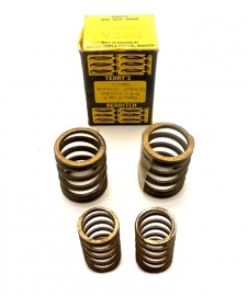 Terry's Aero valve springs for Royal Enfield 248 OHV (VS392)