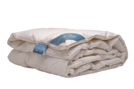 Duvet Doré Platinum-Winter - 100% dons-