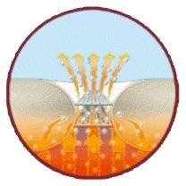 Castella Clima Balance Winter donsdekbed- klimaatregulerend