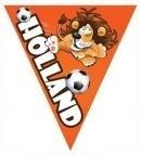 Vlaggenlijn / slingers dubbelzijdig bedrukt Holland met Leeuw