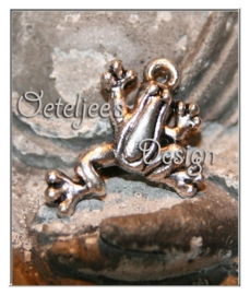 Bedel - Metaal klimmend kikkertje oudzilverkleur