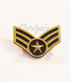 Pin militaire wings