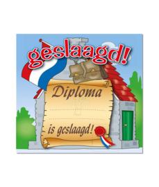 Huldeschild diploma geslaagd