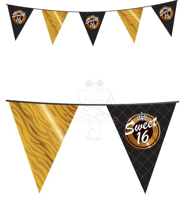 Vlaggenlijn sweet 16 (10 meter)