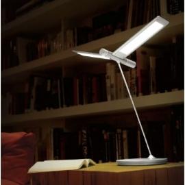 Qis design Seagull