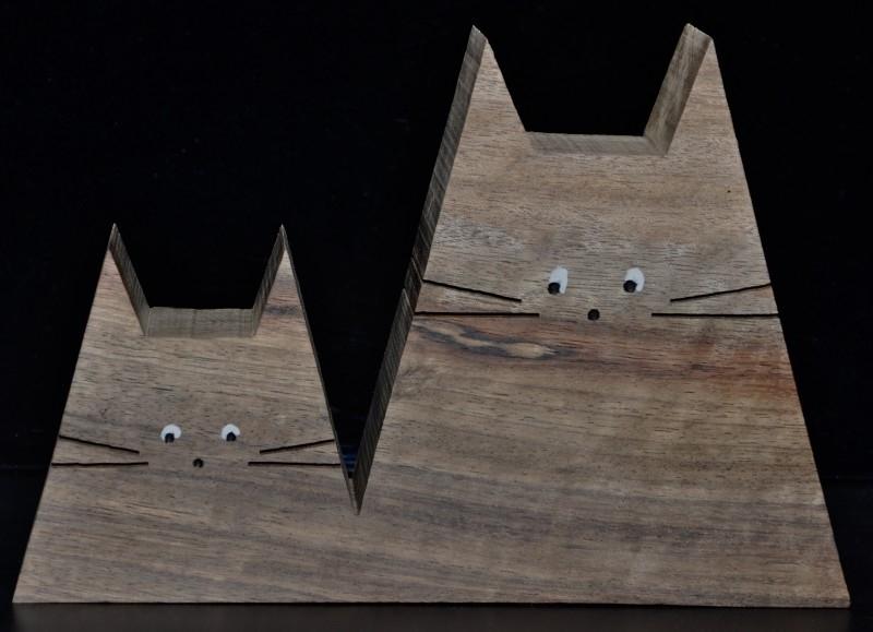 Twee katten recht