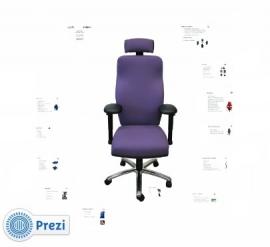 Kosteloze Online Presentatie over Orthopedisch aangepaste bureau- werkstoelen!!
