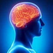 Terugkeer naar werk voor mensen met niet-aangeboren hersenletsel (NAH)