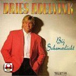 DRIES ROELVINK     - BIJ SCHEMERLICHT -*