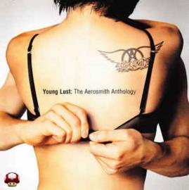 AEROSMITH      * YOUNG LUST: the AEROSMITH ANTHOLOGY *