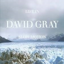 """DAVID GRAY         """"Live In Slow Motion"""""""