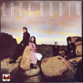 COCK ROBIN        *COCK ROBIN*