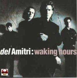 DEL AMITRI      *WAKING HOURS*