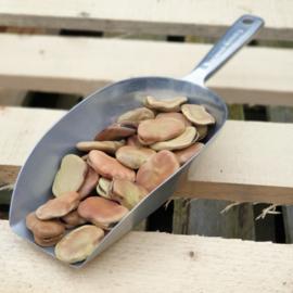Tuinbonen / Hele tuinbonen / gedroogd / Fava beans / Peru / Oogst van 2020 / 500gram
