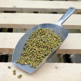 Katjang Idjoe / mungbonen / Soja/soya  vert / US / Oogstjaar 2021 / 0,5 kilo