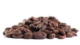 Cacaonibs / Criollo / Ongebrand / Raw / Bio / zakje 250gram