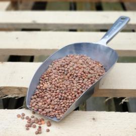 *BIO   Rode linzen heel / Bruine linzen / Sabut Masoor / Teelt: bio - Turkije / Oogstjaar 2021 / 0,5 kilo