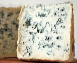 Beluga linzensalade met kaas