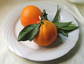 Borlottibonen met citrus en goudreinetten