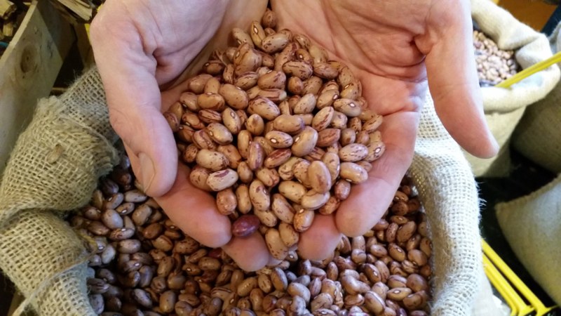 Borlotti bonen, standaard / Italië /Oogstjaar 2020 / 0,5 kilo