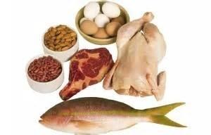 Peulvruchten en eiwitten