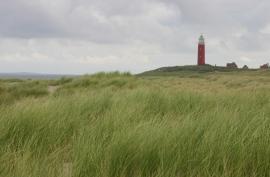 028. Texel en Terschelling.