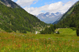 100. Oostenrijk het Ötztal. (Film)