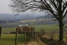022. Veldwandeling in Zuid Limburg in de lente en de zomer.