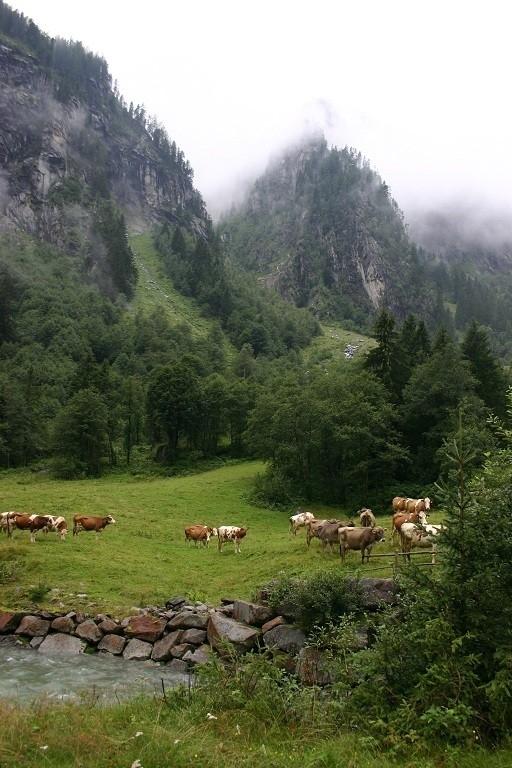 016. Oostenrijk deel 1 Tirol het Zillertal en het Kaunertal.