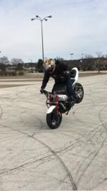Recall: Meerdere Aprilia en Moto Guzzi modellen (voorrem kan automatisch in werking treden!)