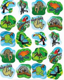 Regenwoud - 20 Stickers