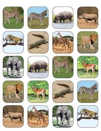 Safaridieren - 20 stickers