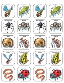 Enge Insecten Stickers - 20 Stickers