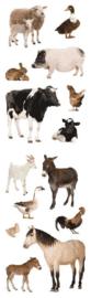 Dieren van de boerderij- 14 Stickers
