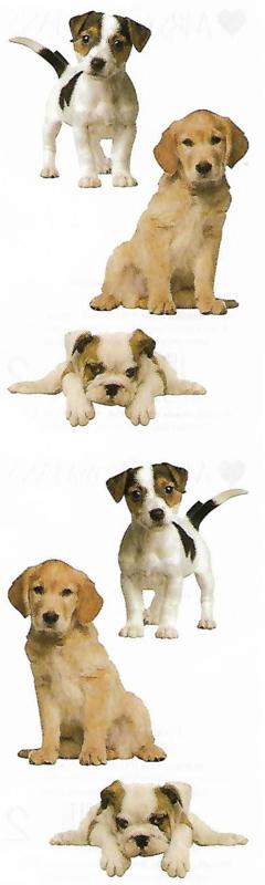 Prachtige Puppy's - 6 Stickers