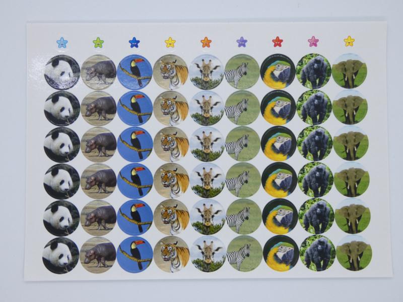 Beloningsstickers Foto Safari 19mm - 54 Stickers