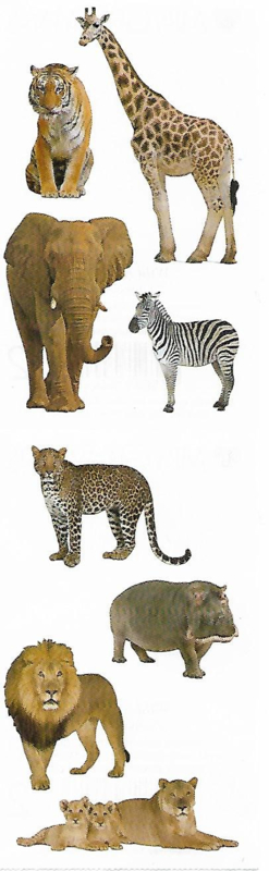 Wilde Safari Beesten - 8 Stickers