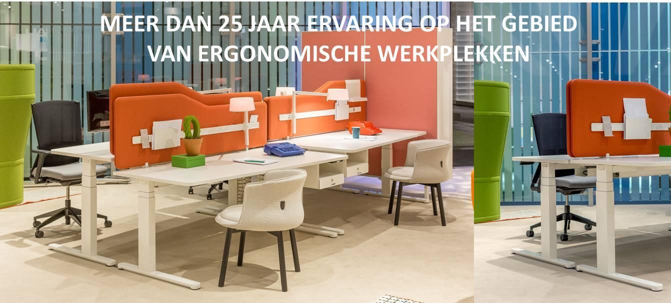 www.elektrischbureau.nl