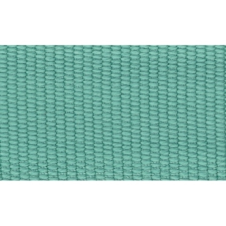 Ripsband 26 mm Mint