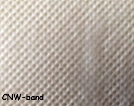 CNW-band.jpg